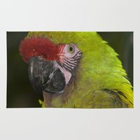 military Area & Throw Rugs featuring Military Macaw by Maureen Bates Photography