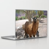 lama Laptop & iPad Skins featuring Lama-liscious by Sahara Novotny