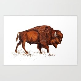 Buffalo Bison Watercolor Print Art Print