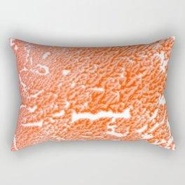 carrying Rectangular Pillow