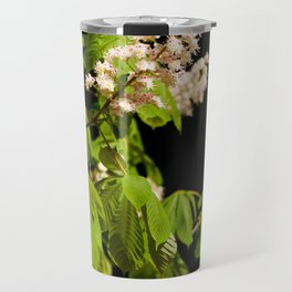 blooming Aesculus tree on black Travel Mug