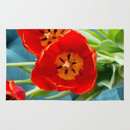 Red Tulips on Rich Teal  Rug