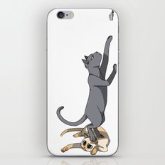 The Cats iPhone & iPod Skin