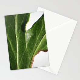 Ivy leaf Stationery Cards