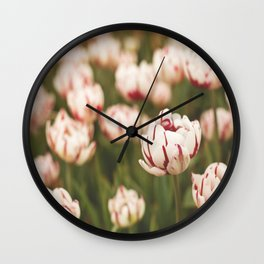 Candy Tulips Wall Clock