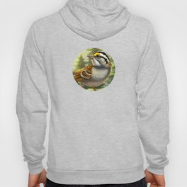 Song of the North Hoody