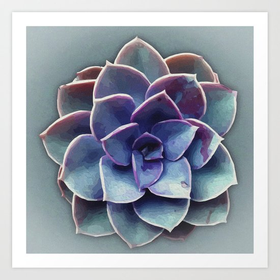 Painted Succulent Art Print