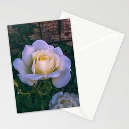 Rose haze Stationery Cards