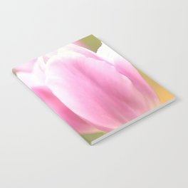 Spring is here with wonderful  colors - close-up of tulips flowers Notebook