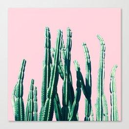 Green Cactus 14 Canvas Print