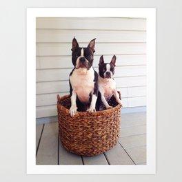 Basket Cases Art Print