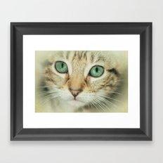 FELINE BEAUTY Framed Art Print