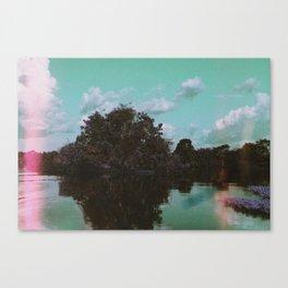 a m a z o n a s  Canvas Print