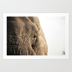 Elephant, into the wild.  Art Print