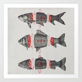 Sashimi All Art Print