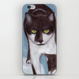 Cat in Snow iPhone Skin