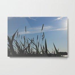 Green reeds large leaves Metal Print