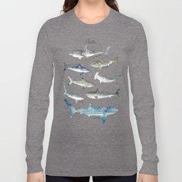 Sharks Langarmshirt