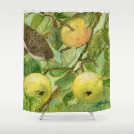 Bird in Apple Tree with Apples - Watercolor on Panel - Laurie Rohner Shower Curtain
