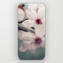 Spring blossom on rustic wooden table iPhone Skin