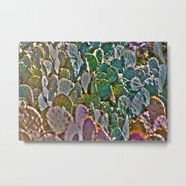 Cactus Cacti Metal Print