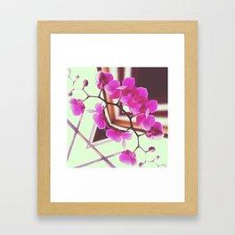 Orchid Manipulation Framed Art Print