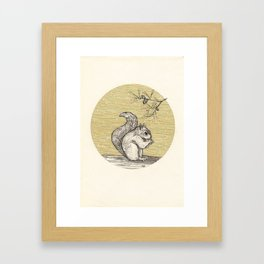 A squirrel Framed Art Print