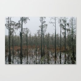 the secrets they keep // cypress swamp // georgia Canvas Print
