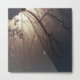 Nature Photography Metal Print