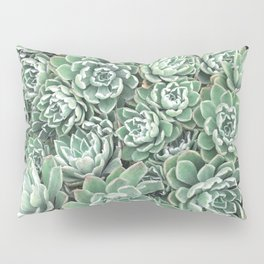Succulent Bed Pillow Sham