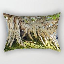 Chinese Banyan Ficus Bonsai Rectangular Pillow