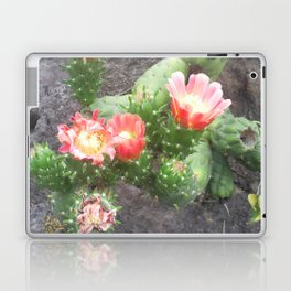 A cactus in its bloom Laptop & iPad Skin