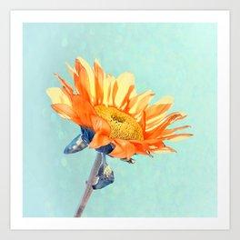 Sunflower Daze Art Print