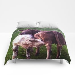 Cows on the field Comforters