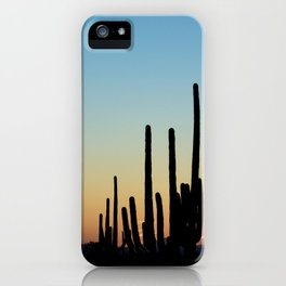 Sunset Cacti 2 iPhone Case