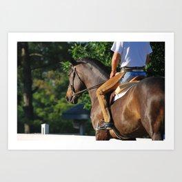 Horse Park 137 Art Print