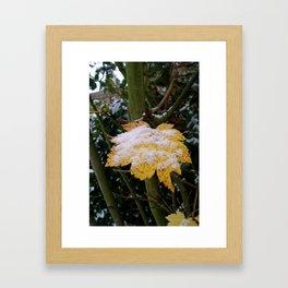 Snowy Leaf Framed Art Print