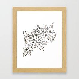 Vine Roses Framed Art Print