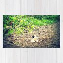 Lost Puppy Dog by citylifecountryliving