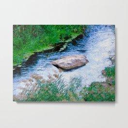 River stone Metal Print