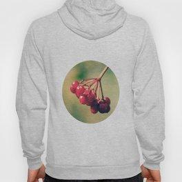Berry Berry Me  Hoody