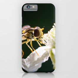 Hoverfly is laying on a white flower, image with a dark background iPhone Case