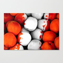 Fruits and berrys II Canvas Print