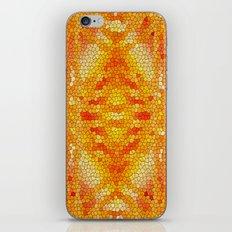 ab initio iPhone & iPod Skin