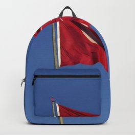 Flag Of Turkey Backpack