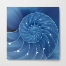 Malibu Blu Mood - Chambered Nautilus  Metal Print