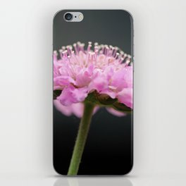 It just blooms iPhone Skin