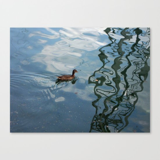Following in the Wake Canvas Print