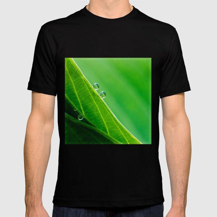 rolling down T-shirt