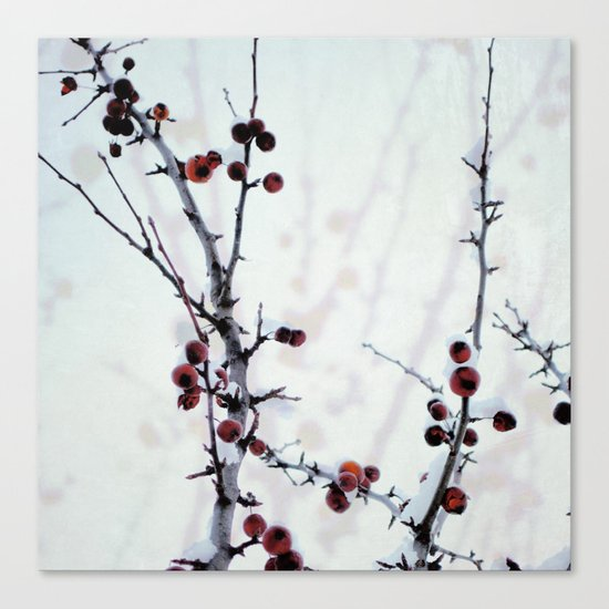 Red Freeze Canvas Print